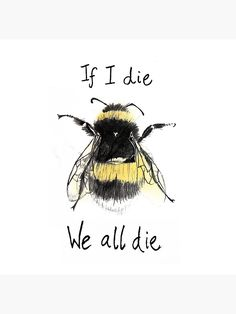If I die we all die. No bees. No food. - If I die we all die. No bees. No food. Save Our Earth, Save The Planet, Save Planet Earth, Earth 3, Amazing Animals, If I Die, Bee Art, Bee Happy, Save The Bees
