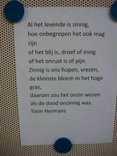 Toon Hermans...