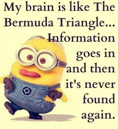 Memory loss isn't just for oldies :-D #minions suffer from it too!!! #quotes