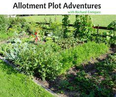 Allotment Plot Adventures with Richard Enriquez - http://backtomygarden.com/podcast/btmg-011-allotment-plot-adventures-richard-enriquez/