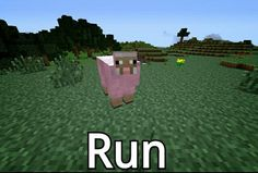 Pink sheep number five billion something something something something. explodingtnt  video games,  funny  #memes,  minecraft