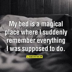 My Bed Is A Magical Place funny lol humor funny pictures funny photos funny images hilarious pictures funny quote images Great Quotes, Quotes To Live By, Me Quotes, Funny Quotes, Humour Quotes, Sleep Quotes, Random Quotes, Quotable Quotes, Inspirational Quotes