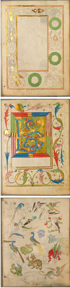 The Illuminated Sketchbook of Stephan Schriber, c.1494. Selected pages from the Spätgotisches Musterbuch des Stephan Schriber, a manuscript which appears to be some kind of sketchbook, belonging to a 15th century monk working in South-West Germany, where ideas and layouts for illuminated manuscripts were tried out and skills developed. #art #illustration #painting