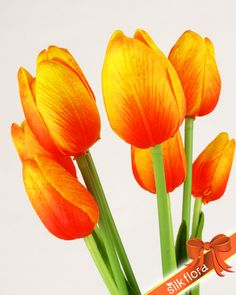 Tulip Bunch_Real Touch / JJ011_Orange