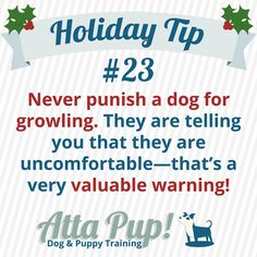 """Atta Pup Training Blog: Holiday Tip #23-------  We would never swat or scold a child for telling us, """"I need help! Someone is doing something that makes me feel unsafe!"""" Never scold or yell at your dog for growling. A growl is a valuable warning and a red flag that you need to step in and help your dog. http://www.peaceablepaws.com/articles.php?subaction=showfull&id=1282173843"""