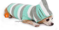 Baby turquoise crocheted dog hoodie.. Soft and comfortable.