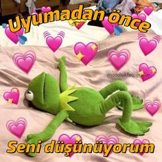 Make kermit in love memes or upload your own images to make custom memes Cute Tumblr Wallpaper, Galaxy Wallpaper, Html5 Canvas, Writing Memes, Cute Love Memes, Meme Maker, Meme Template, Me Too Meme, Kermit