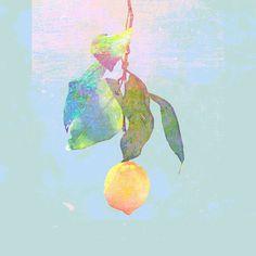 米津玄師 Lemon Instrumental by Hei on SoundCloud Cd Cover, Cover Art, Album Covers, J-pop Music, Rock Music, Japanese Song, Kawaii, Japanese Artists, Kpop