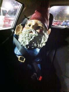 Don't forget to buckle up your Gnome!