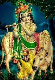 Krishna y uuuy Señor Krishna, Shri Hanuman, Krishna Leela, Cute Krishna, Jai Shree Krishna, Radha Krishna Photo, Shri Ganesh, Durga Maa, Lord Krishna Images