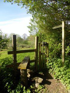 'Apple Orchard Walk' in the village of Peasmarsh, East Sussex, England by B Lowe