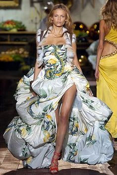 Roberto Cavalli Spring 2005 Ready-to-Wear collection, runway looks, beauty, models, and reviews.