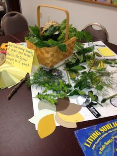 What is green all about? Using natural materials to teach color. Use various evergreen samples. Preschool Colors, Teaching Colors, Preschool Art, Reggio Inspired Classrooms, Reggio Classroom, What Is Green, Emergent Curriculum, Creative Area, Kindergarten Science