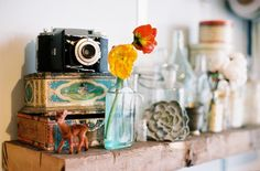 Flowers, vintage camera, old bottles.