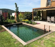 Jezírko ve stylu bazénu - Kuřim 35m³ - Zahradní jezírka | small lake Natural Swimming Pools, Future House, Outdoor Decor, Garden, Nature, Outdoors, Home Decor, Swim, Rock Pools