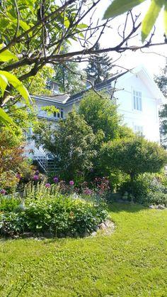 Det blomstrer Garden, Plants, Pictures, Photos, Garten, Flora, Plant, Lawn And Garden, Outdoor