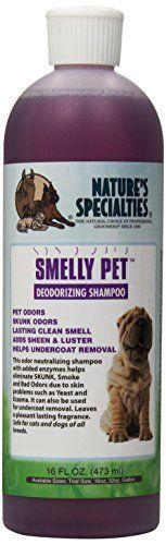 Natures Specialties Smelly Pet Shampoo 16Ounce ** Read more  at the image link.