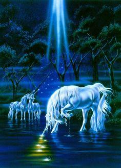 Rite Of  The Unicorns