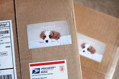 boutique photography packaging to complement your images #prophotography #photostickers #photopackaging