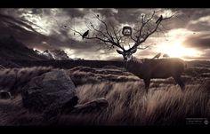 Departed Soul by Karim Fakhoury