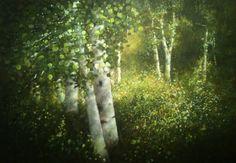 Aspens in Greens