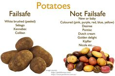 POTATOES. Brushed white potatoes. All others are moderate Salicylates. Failsafe refers to foods that are Free of Additives and Low in Salicylates, Amines, Glutamates and Flavour Enhancers