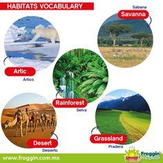 Mes del Medio Ambiente, ¡así se dicen algunos hábitats naturales en inglés!