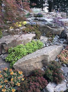 A rock garden in RHS Flower Show, Tatton Park 2015