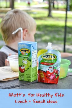 Kids Healthy Snack and Lunch Ideas