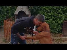 Paco, un amore di Vizsla all'Agriturismo le Grange - YouTube
