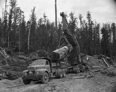 Old Log Trucks