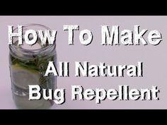 The Secret Real Truth: Κουνούπια ΤΕΛΟΣ! Ένα Απίστευτο Κόλπο για να Εξαφανίσετε τα Κουνούπια για Όλο το Καλοκαίρι.