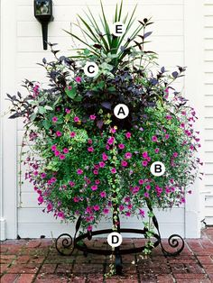 Shine Your Light: Container Gardening