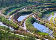 Turenscape's regenerative wetland park cleans up a post-industrial landscape in China | Inhabitat - Sustainable Design Innovation, Eco Architecture, Green Building