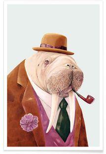 Walrus - Animal Crew - Premium Poster