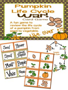 "FREE! A fun, ""Slap-Jack""-style game for reviewing the pumpkin life cycle through pictures, words and ordinal numbers."