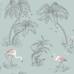 We've got thousands of wallpaper patterns to choose from. Whether you're looking for a bright feature wall, or a classic stripe, we have a wallpaper design for you Coral Wallpaper, Flamingo Wallpaper, Feature Wallpaper, Tropical Wallpaper, Bird Wallpaper, Pattern Wallpaper, Bathroom Wallpaper Grey, Bedroom Wallpaper, Bathroom Grey
