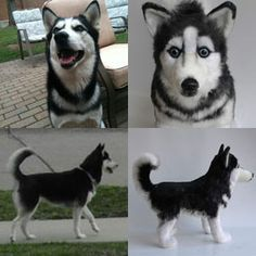100% custom stuffed animals made to look just like YOUR pet! They're called Cuddle Clones : ) This is Luna the Siberian Husky and her Cuddle Clone : )