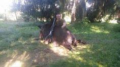 Big Romanian Wild Boar Trophy