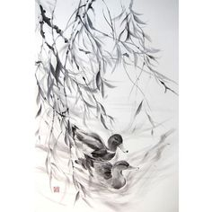 Japanese Ink Painting, Japanese art, Azian art, Sumi-e, Suibokuga,  Rice paper, Black, Large 18x28' Couple of Ducks under Willow