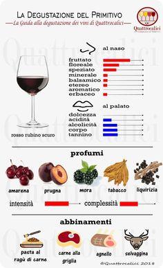 Syrah - Guided tasting at Syrah Wines - Quattrocalici.it - WordPress Sitesi Wine Party Appetizers, Wine Coolers Drinks, Sweet White Wine, Sangria Wine, Zinfandel Wine, Wine Varietals, Chateauneuf Du Pape, Spanish Wine, Wine Sale