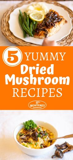 Dried mushrooms add powerful flavor to any dish – but many people don't know how to use them! Discover 5 delicious dried mushroom recipes in this post. After reading this, you'll know exactly how to use dried mushrooms! Dry Mushroom Recipes, Mushroom Zucchini Recipe, Mushroom Side Dishes, Best Mushroom Recipe, Mushroom Appetizers, Mushroom Dish, Mushrooms Recipes, Raw Food Recipes, Vegetable Recipes