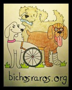 asociación bichosraros.org