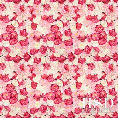 Flower Wall Photography Backdrop, Spring Photo Backgrounds Backdrops – HSD Photography Backdrops & Floor Drop Photo Backgrounds