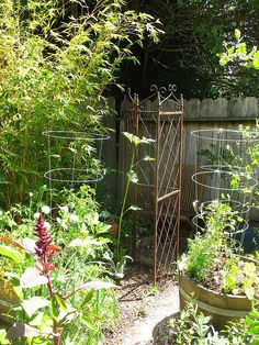 use other objects for plant supports/trellis