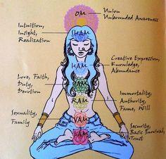 """""""Três minutos de meditação, afetam o campo eletromagnético. Onze minutos de meditação, modificam o sistema glandular. Trinta e um minutos de meditação, permitem aos fluídos dos sistema glandular alcançar todas as células do corpo. Sessenta e dois minutos de meditação, modificam a matéria cinzenta do cérebro. Duas horas e meia de meditação, modificam as células, os tecidos do corpo e reconstroem todo o sistema. A pessoa é reconstituída tal e como se estivesse estado no útero""""  ~Yogui Bhajan"""