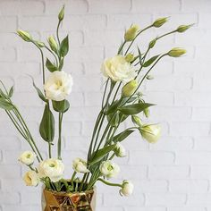 When you realize that your vase of leftover blooms totally rocks... you snap a pic.  #ThinkFlowers #florist #ranunculus #lisianthus #flowers . . . . #blooms #flower #flowersofinstagram #flowershop #simple #floweroftheday #flowerphotography