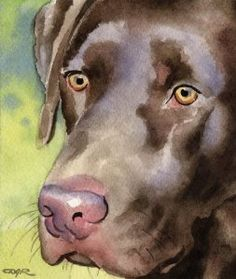 """Chocolate Lab"" Dog Art Print Signed by Artist DJ Rogers"
