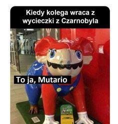 Very Funny Memes, True Memes, Wtf Funny, Meme Generation, Polish Memes, Best Memes Ever, Weekend Humor, Funny Mems, Nyan Cat