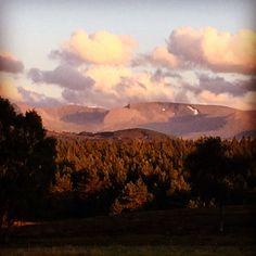 Cairngorm plateau on a summers evening
